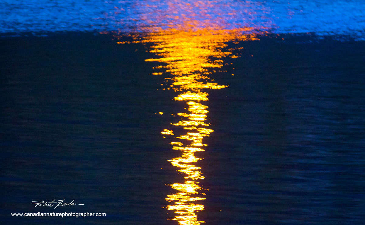 sun reflecting off water abastract by Robert Berdan ©