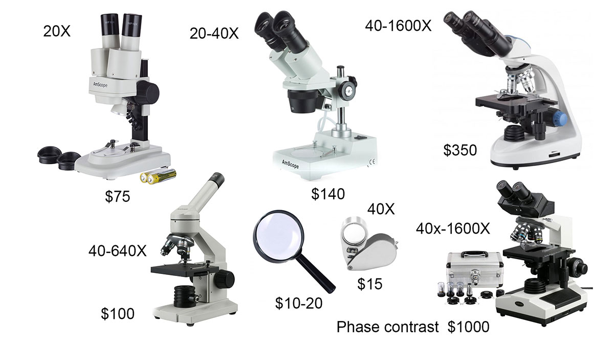 Low cost microscopes