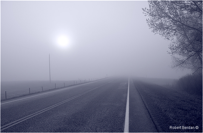 Road in fog along Big Hill Springs Road by Robert Berdan ©