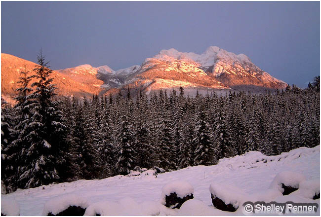 Mount Arrowsmith, Vancouver Island by Shelly Penner ©