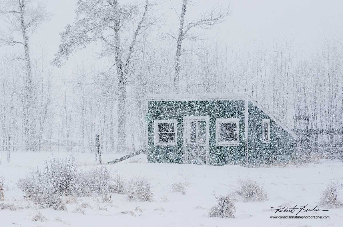 Winter cabin by Robert Berdan ©