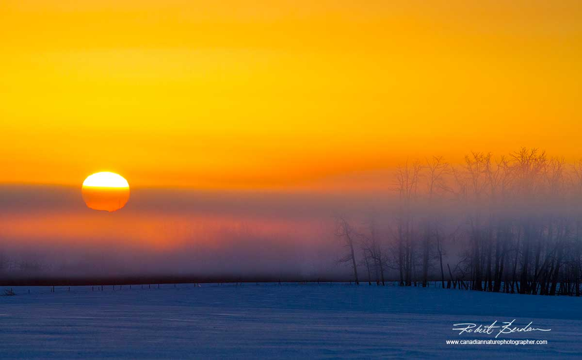 Winter sunrise off highway 2 in Alberta by Robert Berdan ©