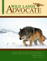 Wild Lands Advocate cover shot of Wiley by Robert Berdan ©