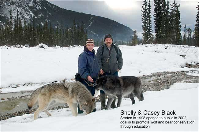 Shelly and Casey Black in Blaeberry Valley with wolves Tuk and Wiley by Robert Berdan ©