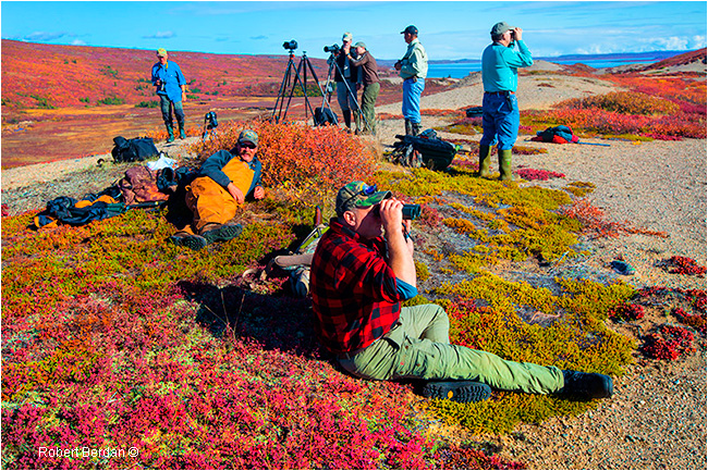 Group of photographers on the tundra by Robert Berdan ©
