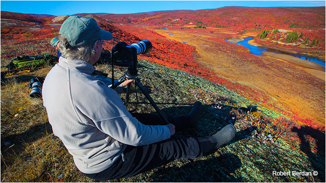 Photographer sitting on an Esker looking for wildlife to photograph by Robert Berdan ©