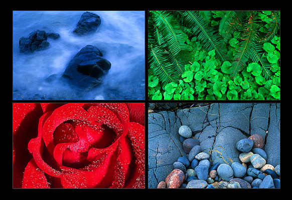 Photo showing different examples of texture by Robert Berdan ©