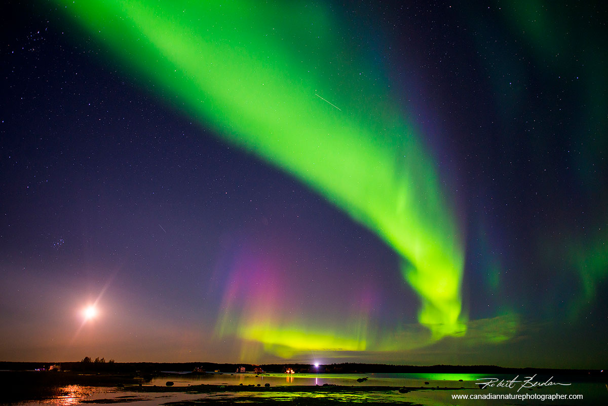 Aurora borealis over Yellowknife Bay, NT by Robert Berdan ©