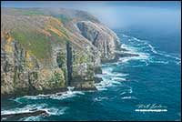 Cape St. Mary's Newfoundland by Robert Berdan