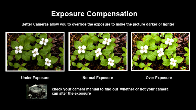 Exposure compensation by Robert Berdan ©
