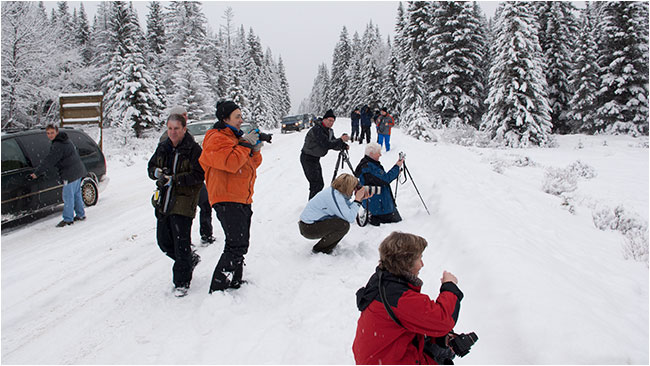 Photographers in Banff National Park in winter by Robert Berdan ©