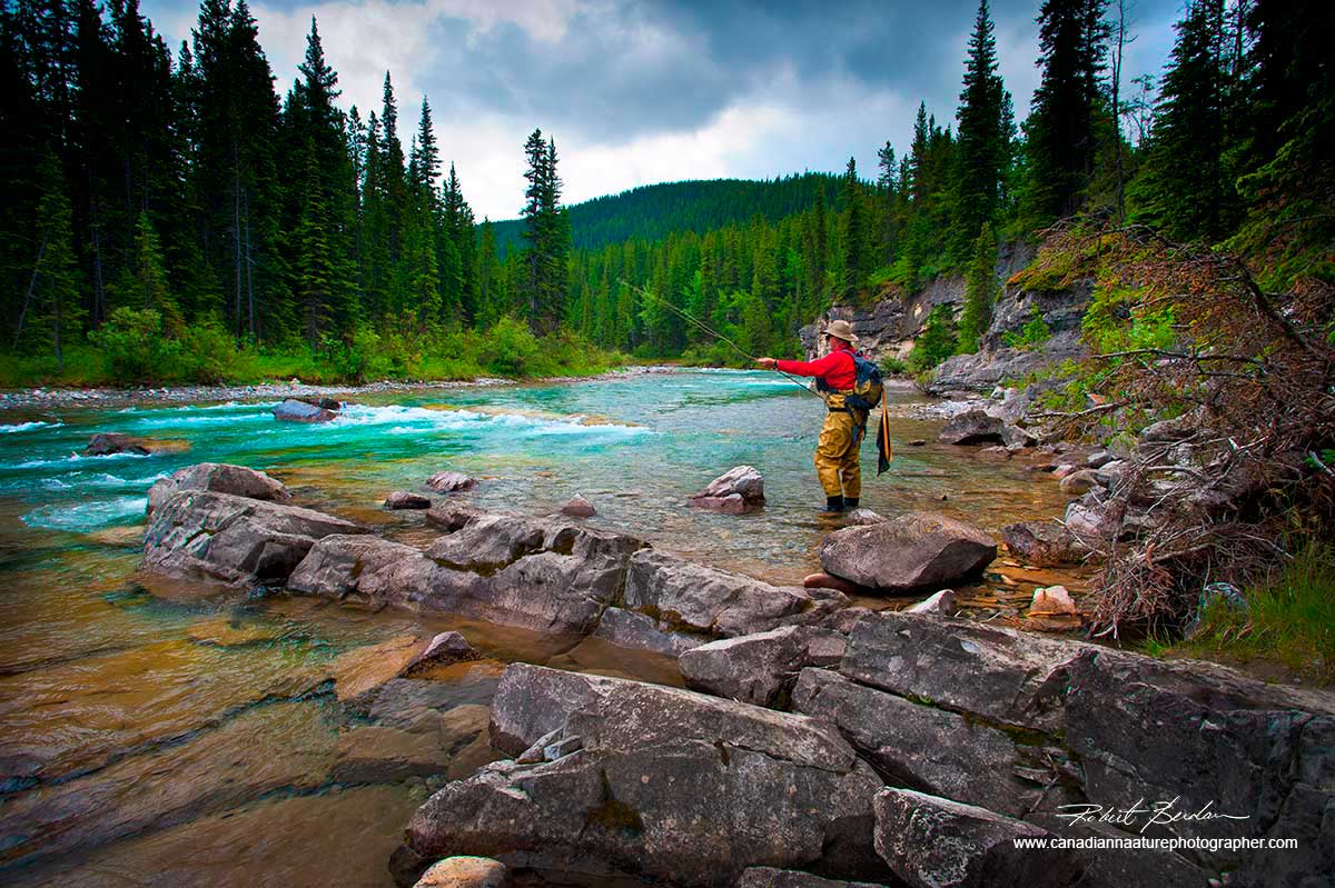 Frank Wood fly-fishing in the Elbow River near Elbow Falls, AB  by Robert Berdan ©