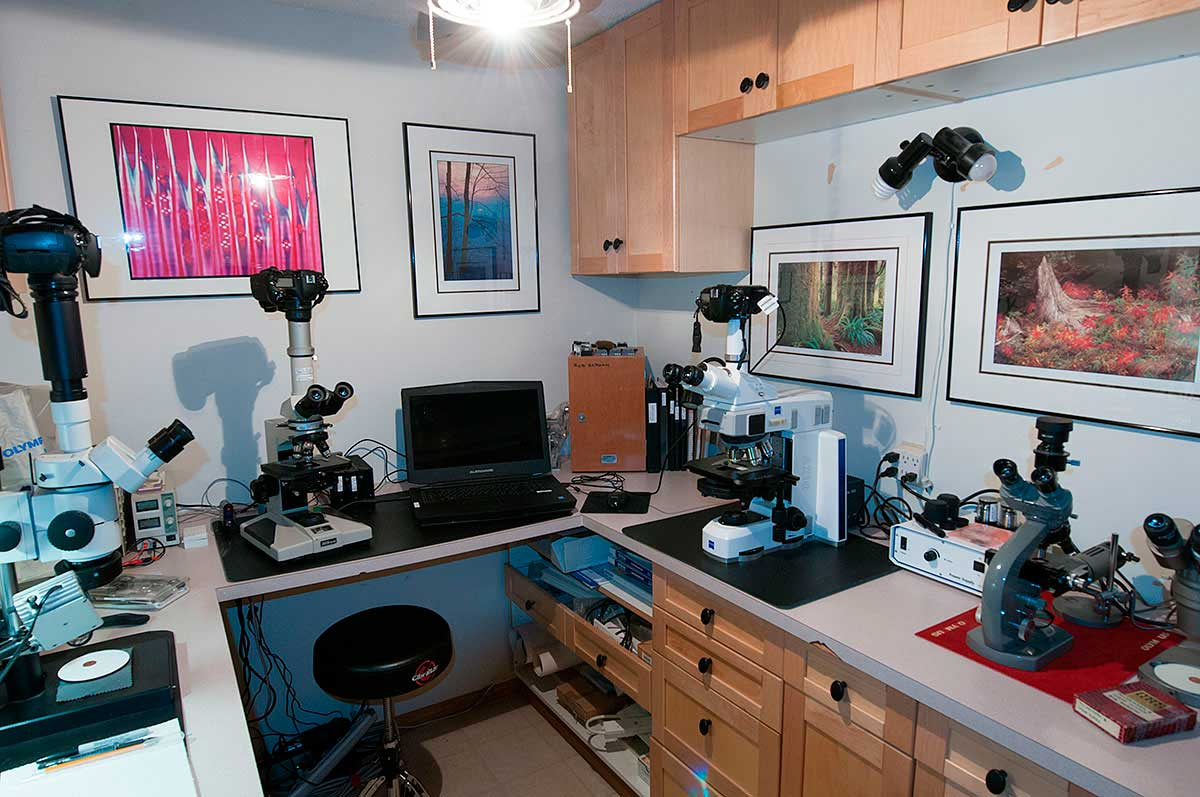 Microscopy laboratory by Robert Berdan ©