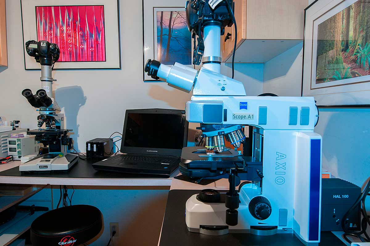 Zeiss Axioscope with Nikon D800 camera attached Robert Berdan ©