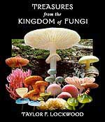 Treasures from the Kingdom of Fungi by Taylor Lockwood