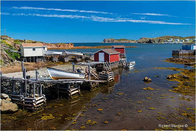 Guilesport near Twillingate Newfoundland by Robert Berdan ©