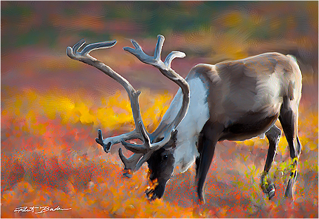 simulate oil painting with adobe photoshop cs5 the canadian nature