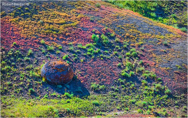 Pastel coloured grass Red Rock Coulee by Robert Berdan ©