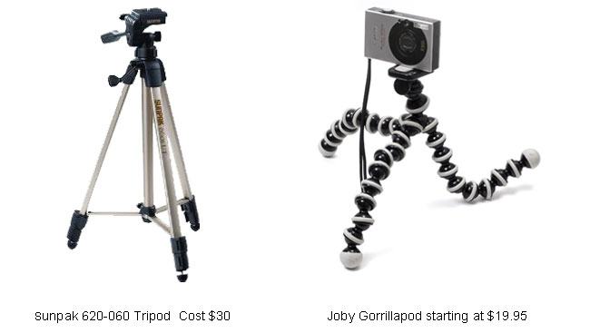 An Overview Of The Best Tripods And Heads For Nature