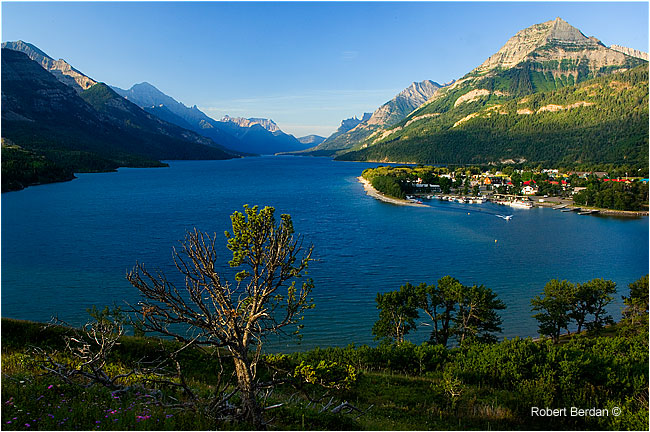 Overlooking Waterton lake by Robert Berdan ©
