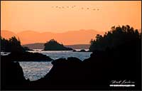 Sunrise over Broken Islands from Uclulet by Robert Berdan