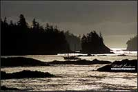 Boat returning to harbour Ucluelet British Columbia by Robert Berdan