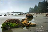 Long Beach near Toffino Vancouver Island British Columbia by Robert Berdan
