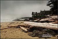 Wickaninnish center Pacific Rim National Park by Robert Berdan