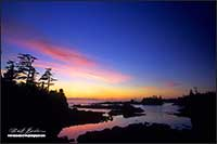 Sunset Wild Pacific Trail Ucluelet Bitish Columbia by Robert Berdan