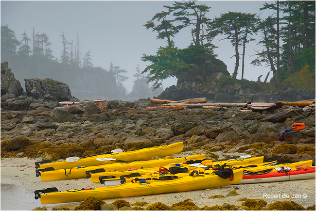 Kayaks on West Coast island by Robert Berdan ©