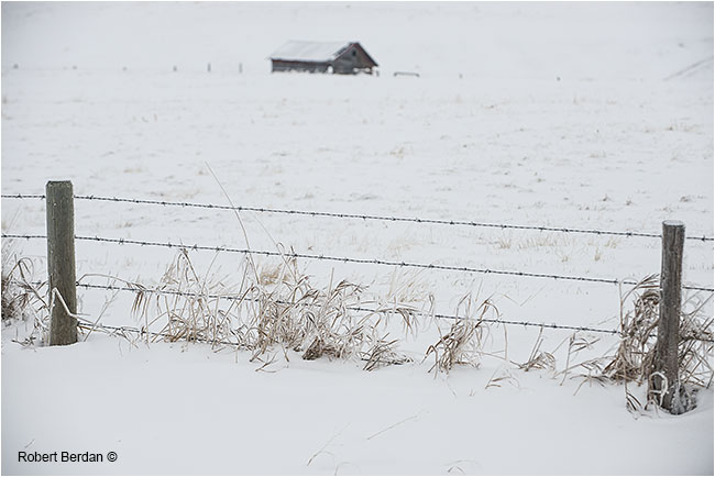 Fence, snow and old cabin in field by Robert Berdan ©